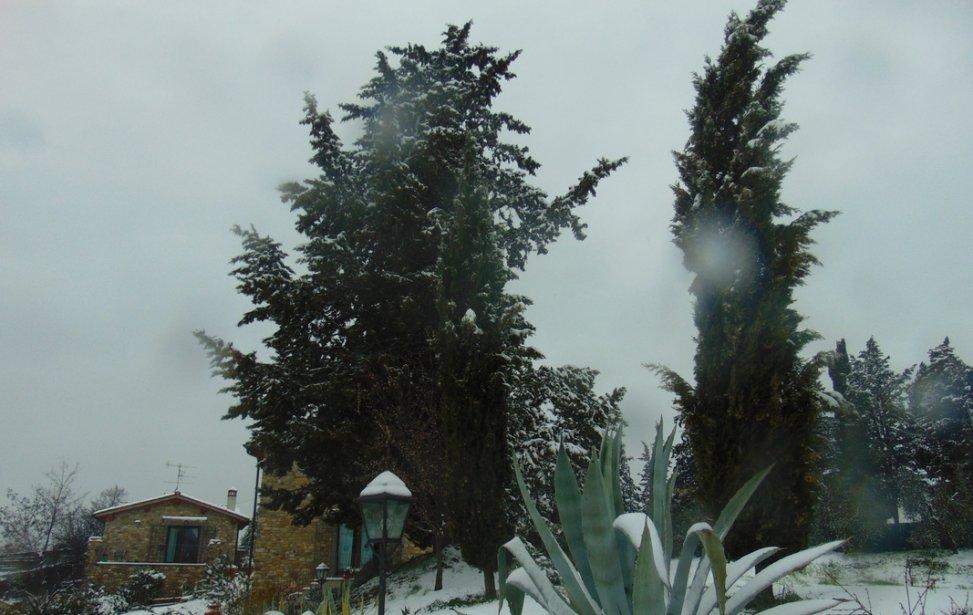 https://www.agriturismocircugnano.it/immagini_pagine/03-03-2018/1520074991-426-.jpg